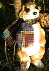 Wee MacMeerkat Soft Plush Toy - Small